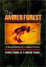 The Amber Forest Book cover